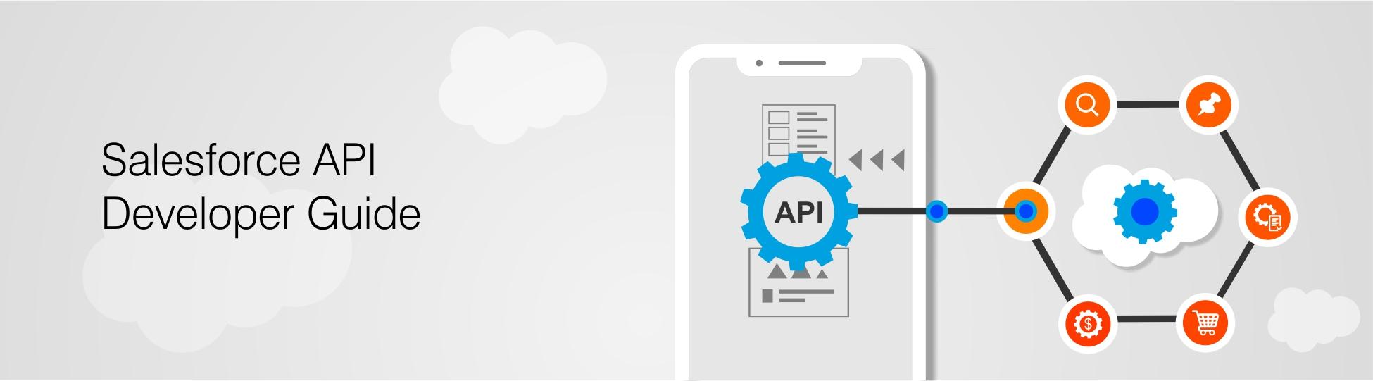 Salesforce API Developer Guide